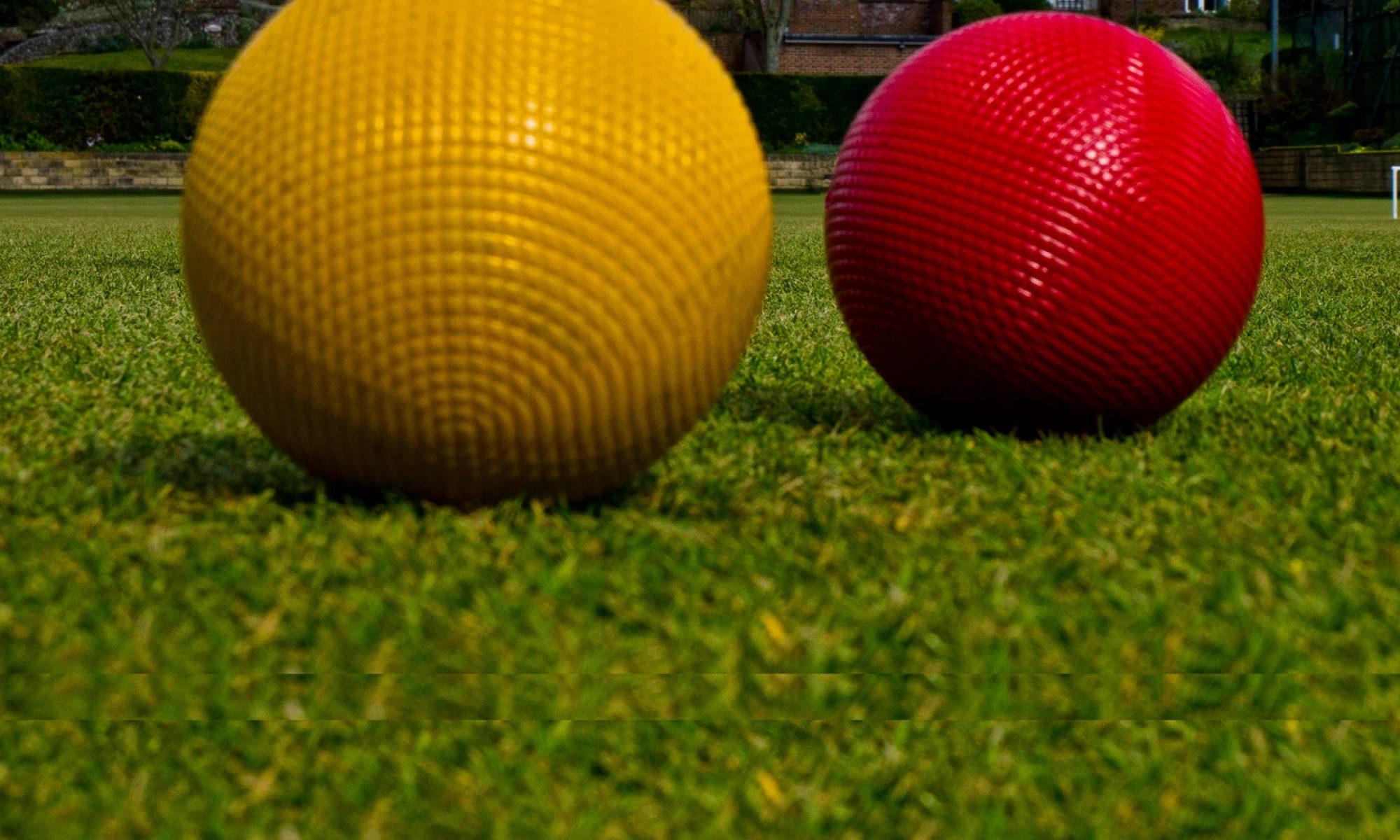 Purley Bury Croquet Club